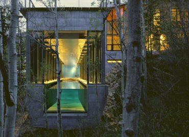 Casa en el bosque BCJ Architects